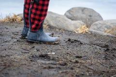 泥泞的水牛格子花呢披肩解雇沿岩石海岸线的身分 免版税库存照片