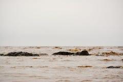 泥泞的海 免版税库存图片