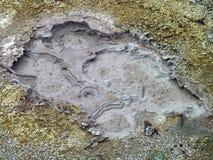 泥泞的温泉详细资料 库存照片