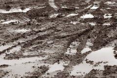 泥泞的线索 图库摄影