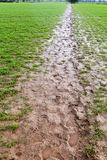 泥泞的跟踪 库存照片
