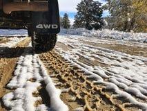 泥泞的路轮胎跟踪 库存照片