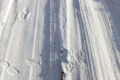 泥泞的路,冬天 库存照片
