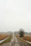 泥泞的路 免版税库存照片