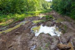 泥泞的路 库存图片