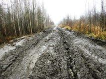 泥泞的路 免版税库存图片