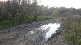 泥泞的路 免版税图库摄影