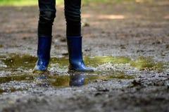 泥泞的水坑 免版税库存照片