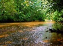 泥泞的水 免版税图库摄影