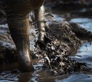 泥泥光彩的泥 免版税库存图片