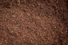 泥炭沼土壤 免版税库存图片