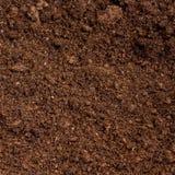 泥炭沼土壤 库存图片