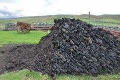 泥煤堆 免版税库存照片