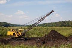泥煤猎物 免版税库存图片