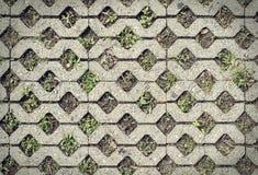 水泥砖地板有孔背景 免版税库存图片