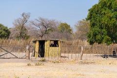 泥秸杆和木小屋与茅屋顶在灌木 农村卡普里维小条的,在Na的居住于的区域地方村庄 免版税图库摄影