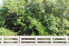 水泥篱芭背景的装饰庭院 免版税库存图片
