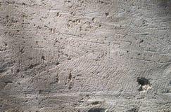 水泥粗砺的墙壁 免版税库存图片