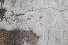 水泥老纹理墙壁 库存图片