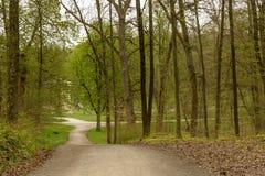 泥铺跑道在春天森林,斯图加特交叉路  库存图片