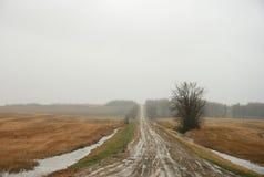 泥雨夹雪 库存照片