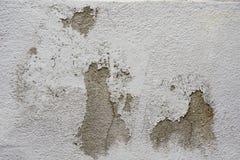 水泥破裂的墙壁 免版税库存图片