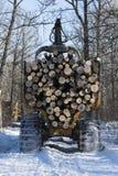 注册一个中央明尼苏达森林 免版税库存图片