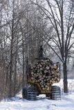 注册一个中央明尼苏达森林 库存照片
