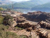 注册有大量手段、被堆积的木材和森林的树农村斯威士兰在背景,非洲中 免版税库存图片