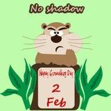 注视着在与的孔外面绿色的groundhog的图象浅绿色的背景 图库摄影