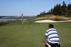 注视高尔夫球运动员轻轻一击 免版税图库摄影