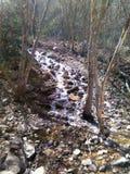 泰勒峡谷的小落下的瀑布在Ogden犹他 库存图片