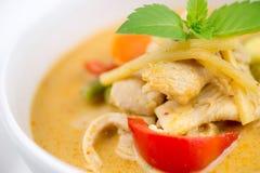 泰国与混杂的菜的鸡红色咖喱特写镜头  免版税库存图片