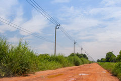 泰国与石渣路的输电线杆绿化背景 免版税库存照片