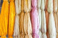 泰国丝绸的桑蚕 免版税图库摄影