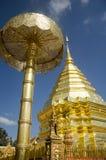 泰国人和外国人尊敬的金黄chedi祈祷 免版税库存照片