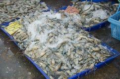 泰国人和旅行家从供营商海鲜的购买海鲜购物 免版税库存图片