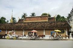 泰国人和马被画的支架等待的旅客人民 库存图片