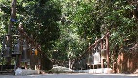 泰国人在土井桐树在清莱,泰国的Wat Phra敲大响铃 影视素材