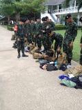 泰国军队 库存图片