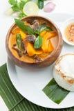泰国南瓜红色咖喱 库存图片