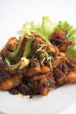 泰国咖喱干鱼的食物 免版税库存照片
