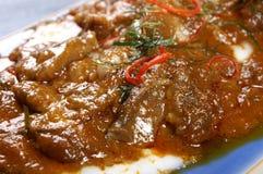 泰国咖喱用椰奶 免版税库存图片