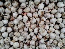 泰国大蒜在超级市场 免版税库存照片