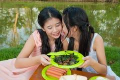 泰国姐妹野餐 免版税库存图片