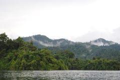 泰国小岛-密林 库存图片