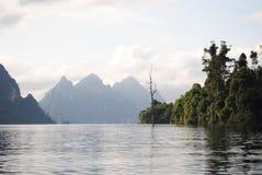 泰国小岛- jungle7 库存图片