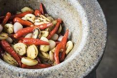 泰国成份:红色辣椒、大蒜和青葱 图库摄影