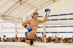 泰国拳击 库存图片