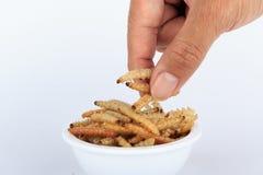 泰国昆虫,快餐的油煎的昆虫粉虫 免版税图库摄影